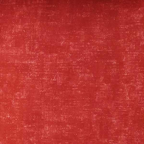 Veludo Estampado tipo Liso 2650 cor 6